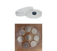 Комплект из двух чашек Петри (100 и 110 мм), полимер купить в Минске, Беларуси